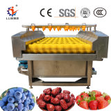 L'industrie Cherry brosses de nettoyage pour la vente de la machine