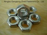Edelstahl Bolt u. Nut/Carbon Steel Hex Bolt und Nut, Hexagon Bolts und Nuts, DIN933/931, DIN934