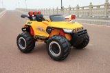 De grote Rit van het Stuk speelgoed van het Elektrische voertuig van het Jonge geitje van de Macht 12V op Auto