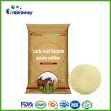 L'alimentation équine GV-Certifiée de bactéries d'acide lactique de cheval complète des additifs