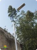 25W LED alle in einer Sonnenkollektor-Straßenlaterne für Straßen-Beleuchtung (SNSTY-225)