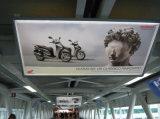 De muur zet het Aanplakbord van het Aluminium op Adverterend Lichte Doos