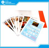 Impresión de folletos de papel carpeta de presentación