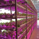 La pianta separata di 18W LED coltiva la lampada idroponica per la pianta