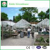 Serre van het Glas van de Spanwijdte van Muti de Commerciële voor Groente en Bloemen