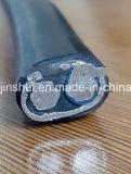 2X8AWG/3X6AWG/3X8AWG 8000 serie del cavo concentrico del conduttore di alluminio per Mexicon domenicano Perù