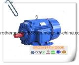 Dreiphaseninduktions-Motor der Serien-Y2