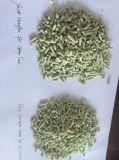 Lettiera del tè verde