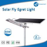 indicatore luminoso di via alimentato solare del giardino di 80W LED con il comitato registrabile