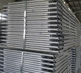 Sistema galvanizzato Hot-DIP dell'armatura 1219*1700 per costruzione