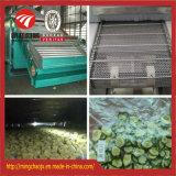 Gemüseimbiss-Heißluft-trocknende Maschinen-kontinuierliche Art