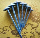 Qualité uniforme des clous ondulés de chapeau de parapluie de parapluie