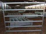 사용된 Cattle Panels (ISO9001 & SGS에)