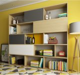 記憶のための現代デザインパネルの家具の本だなのキャビネット