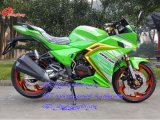 Cara do Fox que compete a motocicleta, motocicleta do esporte