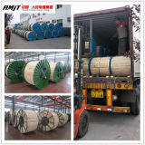 Alumoweld Alumow-Clad Steel Wire Acs Wire