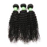 Qualidade superior Kinky Trama Reta Virgem brasileira de cabelo humano