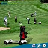 60V 20.8ah 1000W新しいデザインゴルフ電気スケートボードLongboard