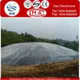 Biogasのダイジェスターは原料の100%年のHDPEの膜からなされる