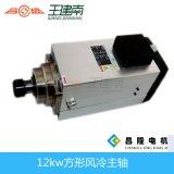 Ultimo motore dell'asse di rotazione del router di CNC del nuovo modello 12kw 18000rpm Er40 380V 300Hz Cina del quadrato (GDZ170*150-12KW)
