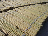 고품질 최고 가격 대나무 담