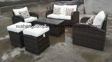 [ب] [رتّن] جديدة تصميم أريكة طاولة أثاث لازم محدّد خارجيّة