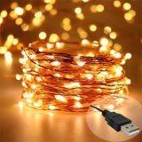 2018 5V 100 светодиодов оптовой открытый String фонари разъем USB волшебная теплого белого света
