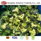 Qualidade superior corte congelado IQF brócolos
