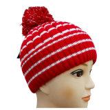 Chapéu feito malha do inverno do chapéu na cor agradável NTD1682