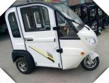 175cc 택시 전송자 세발자전거 중국제