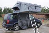 خيمة مقطورة عفن فطريّ برهان [فير رسستنس] أسرة خيمة