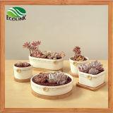 Pot van de Planter van de Bloem van de Stijl van het land de Ceramische Succulente met de Tribune van het Bamboe