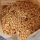 De bonne qualité d'arachides épicée arachides grillées