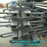 Pont modulaire de meilleure qualité Joint de dilatation avec le plus bas prix