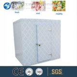 花およびフルーツのためのより冷たい部屋の冷蔵室