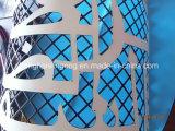 Peinture de revêtement de feuille galvanisée par impression élégante (28meters)