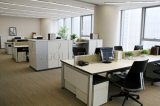 Büro-Partition mit mobilen Untersatz-Arbeitsplatz-Büro-Möbeln (SZ-WST743)