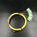 Le 12 memorie di fibra ottica limitano la treccia per la trasmissione della rete ed il CCTV senza fili