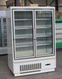 Congelatore commerciale del portello di vetro alimentabile con i grandi volumi della visualizzazione