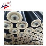 Un buen Transportador de rodillos de nylon resistir la corrosión, PVC, HDPE, rodillo de UHMWPE