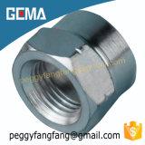 La norma 22611 hembra BSP de zinc de acero al carbono tubo flexible hidráulico para la maquinaria