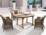 خارجيّ [ويكر] فناء أثاث لازم شرفة [رتّن] مسنّ فندق مكتب يتعشّى كرسي تثبيت وطاولة ([ج375ر])