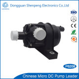 12V de miniPomp van het Water van gelijkstroom Elektronische voor het Nieuwe Voertuig van de Energie