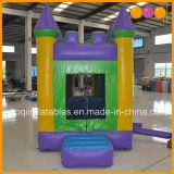 Aoqi castillos inflables Bouncers Diseño con piscina (AQ519)