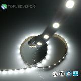 La striscia 150LEDs/5m 12V dell'indicatore luminoso di SMD 2835 LED scalda il colore bianco