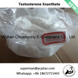 테스토스테론 Enanthate 또는 시험 E 최신 판매 스테로이드 분말