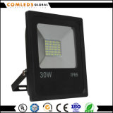 EMC를 가진 Canopy를 위한 10W/20W/30W SMD Series LED Floodlight