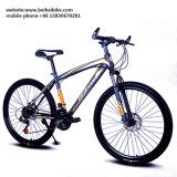 Bici de acero barata del camino
