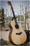 Instrumenten van de Gitaar van de hoogste Kwaliteit de Akoestische Muzikale die in China worden gemaakt