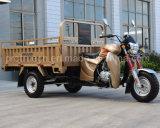 공기 냉각 엔진 150/200/250cc 3 바퀴 기관자전차 화물 세발자전거